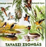 Tavaszi zsongás CD